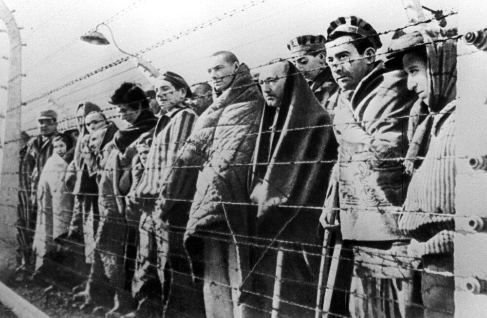"""Rahvusarhiivi uuring: Soome SS-vabatahtlikud osalesid """"väga tõenäoliselt"""" juutide, tsiviilisikute ja sõjavangide tapmises"""