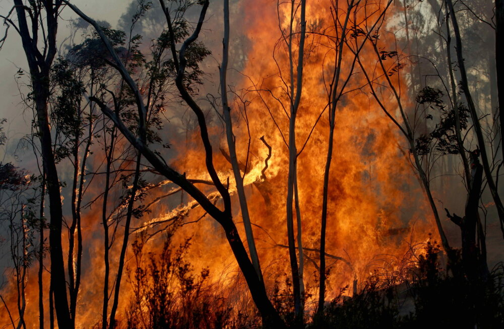 Austraalia põlengud võivad solkida ilmastiku kogu maailmas