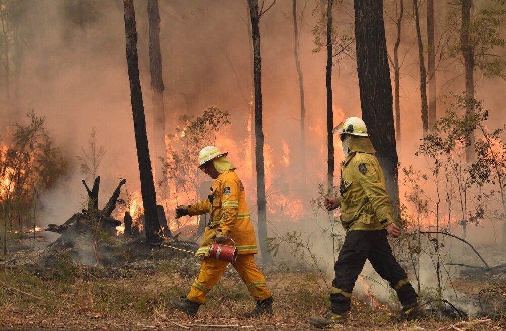 Austraalia põlengud lähevad turismisektorile maksma üüratu summa