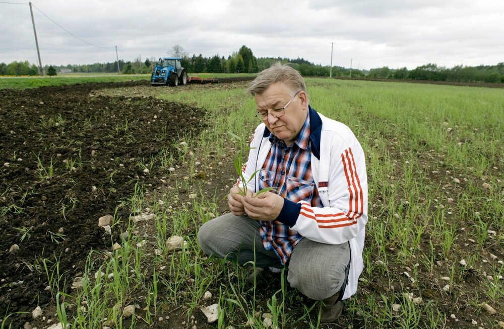 Juhan Särgava leiab, et mahemaad peaks küll juurde tulema, kuid see ei tohi toimuda olemasolevate mahetootjate arvelt