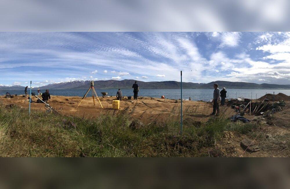 Põhja-Islandil kaevatakse välja haruldast viikingiaaret
