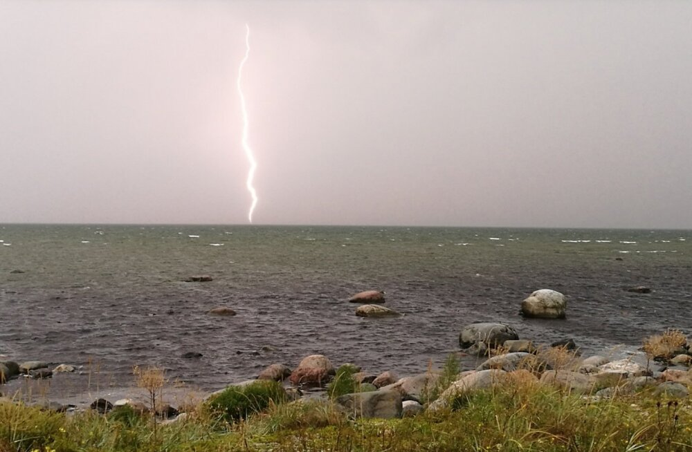 Äike Põõsaspea neemel Läänemaal
