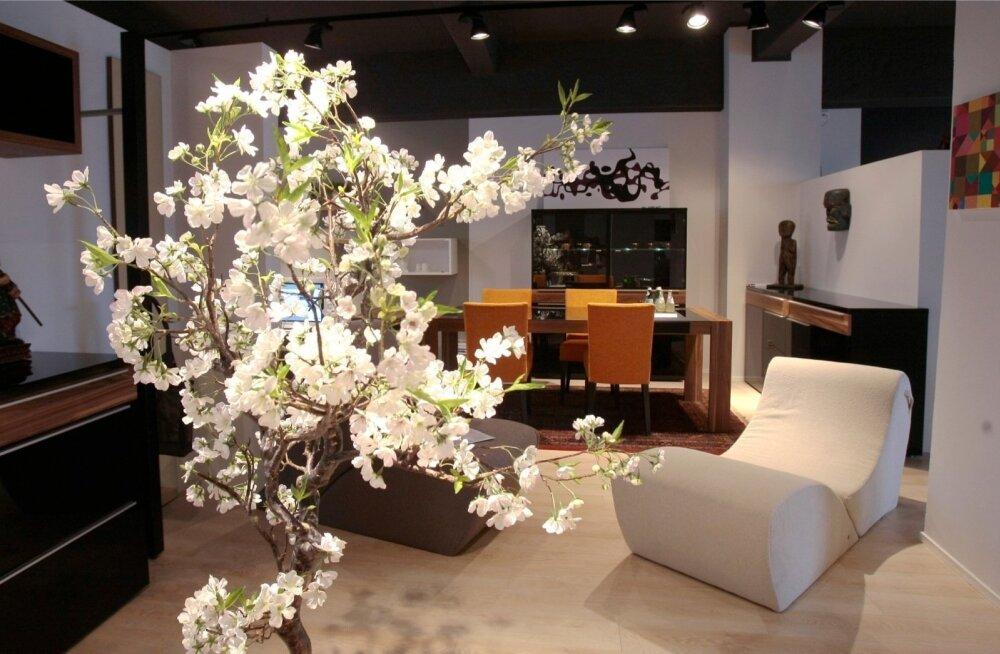 Смотрите лучшие предложения мебельных магазинов: во многих местах цены до 75% ниже