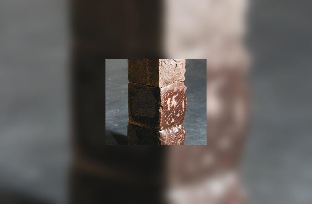 Veri kui väärt ehitusmaterjal – lehmaverest tellised meenutavad keeksi