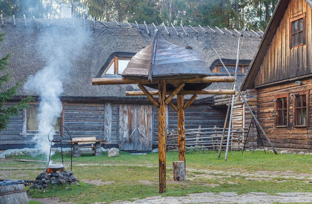 Viikingite küla peab lamba tõttu loomaaia tegevusluba taotlema