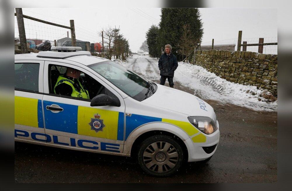 Briti politsei vahistas hobuselihaskandaali asjus kolm meest