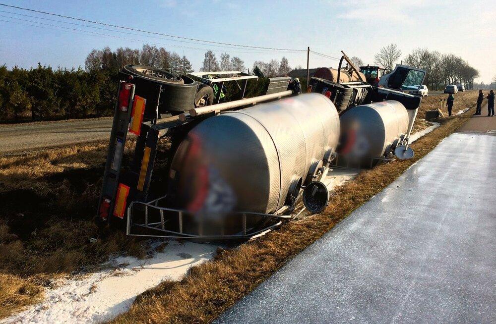 Kolmandiku piima müük Leetu pole Euroopa piimanduseksperdi Christophe Lafougere'i meelest hea lahendus ja võib Eesti piimatootmise kraavi lükata.