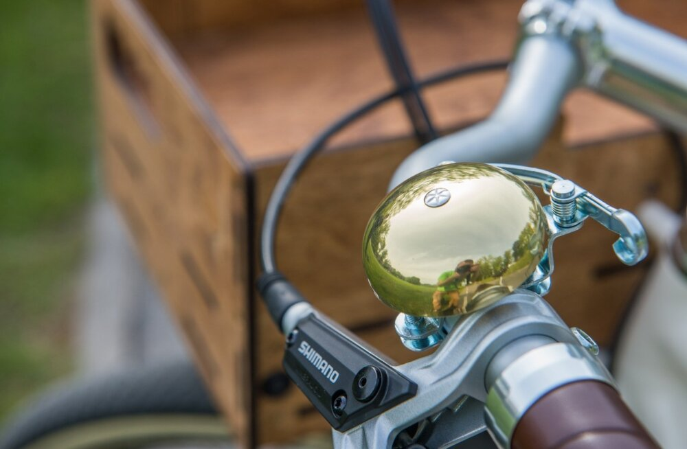 Jalgratas Ööbik