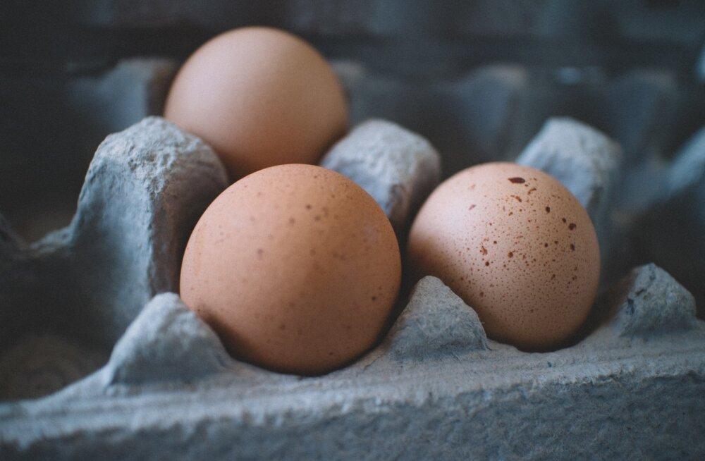 Cкорлупа от яиц как источник кальция: безопасно ли это?