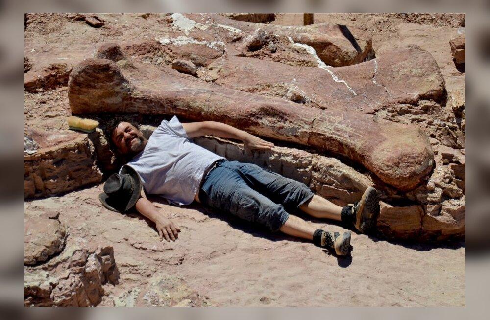 Argentinas avastati suurima eales Maa peal kõndinud looma luud