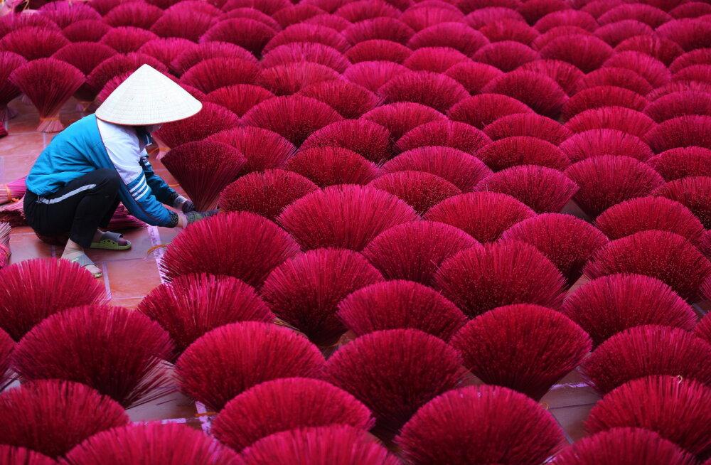 ФОТО | Как делают ароматические палочки во Вьетнаме