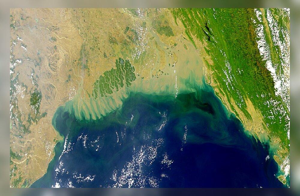 В Индийском океане появилась огромная мертвая зона