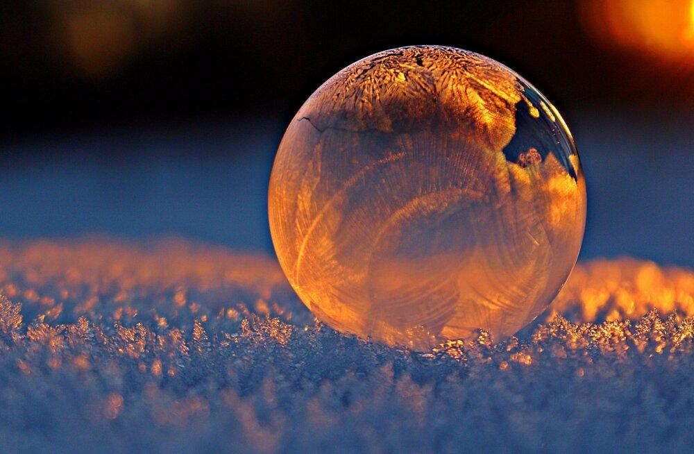 Чем занять ребенка на праздники: 5 идей для игр со льдом