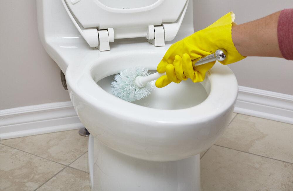 Õpetame selgeks, kuidas wc-harja õigesti kasutada, sest su praegune viis on tõenäoliselt täiesti vale