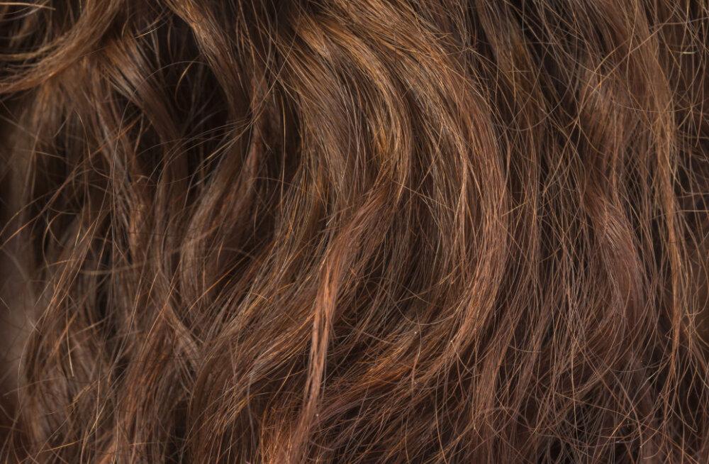 Kui juuksurisse minna ei saa, pead oma katkiseid juukseotsi ise hooldama. Siin on mõned nipid, kuidas seda teha