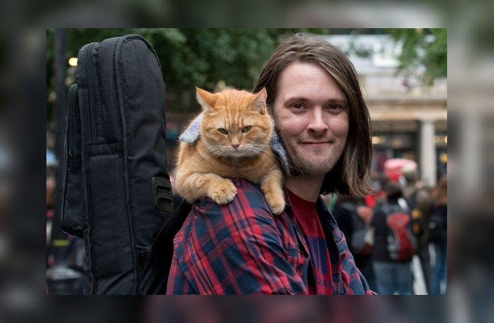 Maailmakuulus raamatukangelane kass Bob suri 14-aastasena