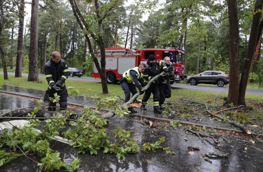 Septembrikuise tormi tagajärjel langesid teedele puud, katkesid elektriühendused ja oli muid probleeme, milleks nüüd loodetakse paremini valmis olla. Pilt on illustratiivne.