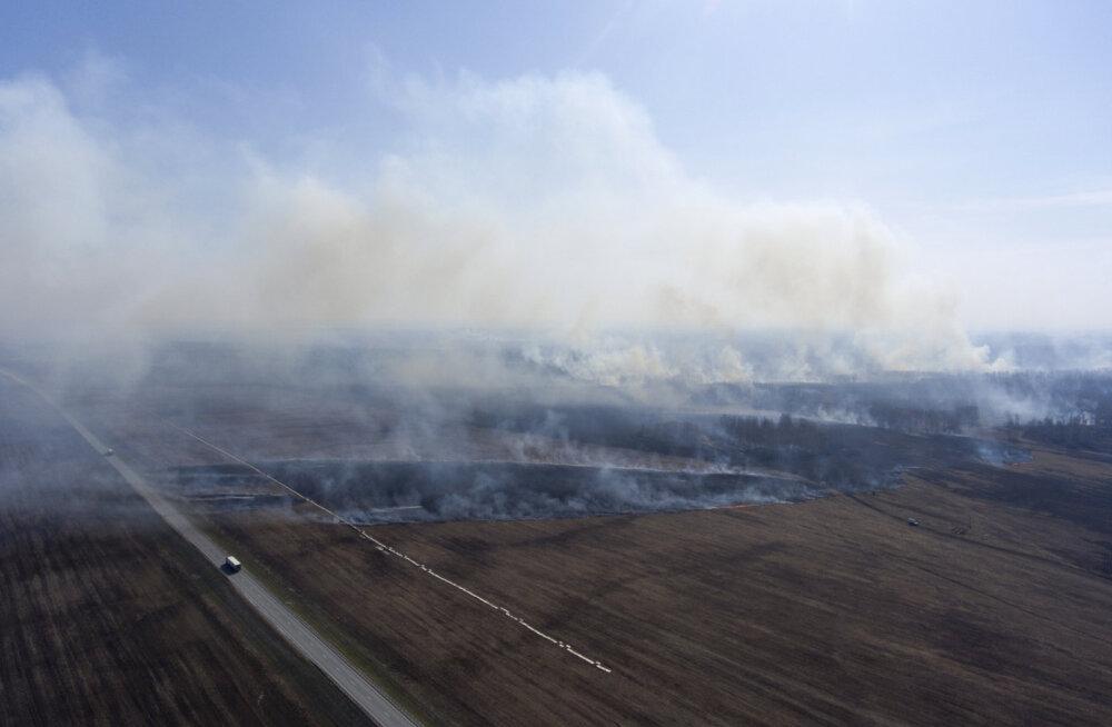 Siber põleb! Tänavused tulekahjud ähvardavad kujuneda eriti laastavaks