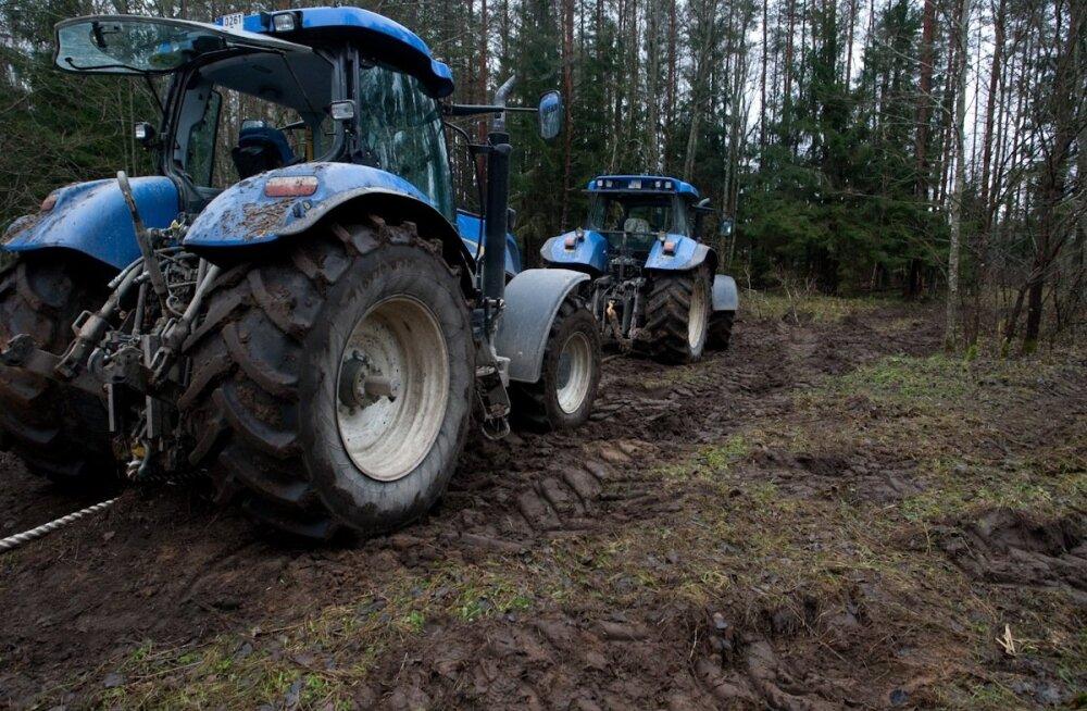 Keskkonnaminister: olukord Eesti metsades on eriline, kuid mitte hädaolukord