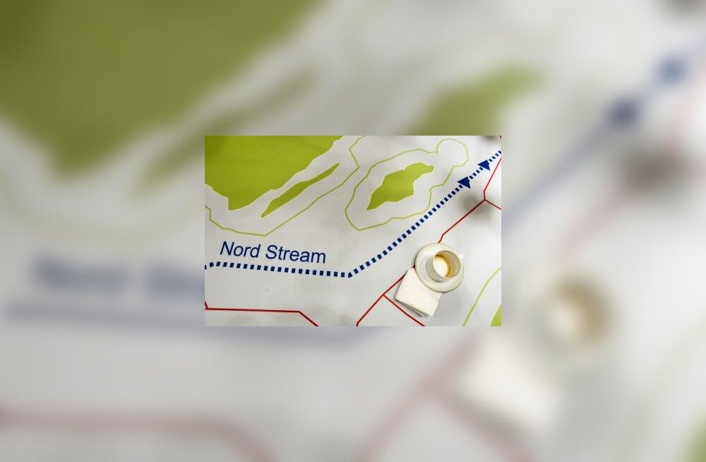 Европарламент постановил проверить Nord Stream на экологичность