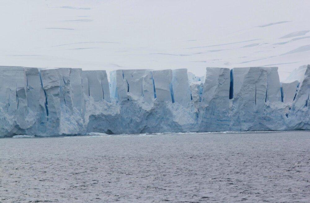 Antarktikas murdus lahti hiiglaslik jäämägi