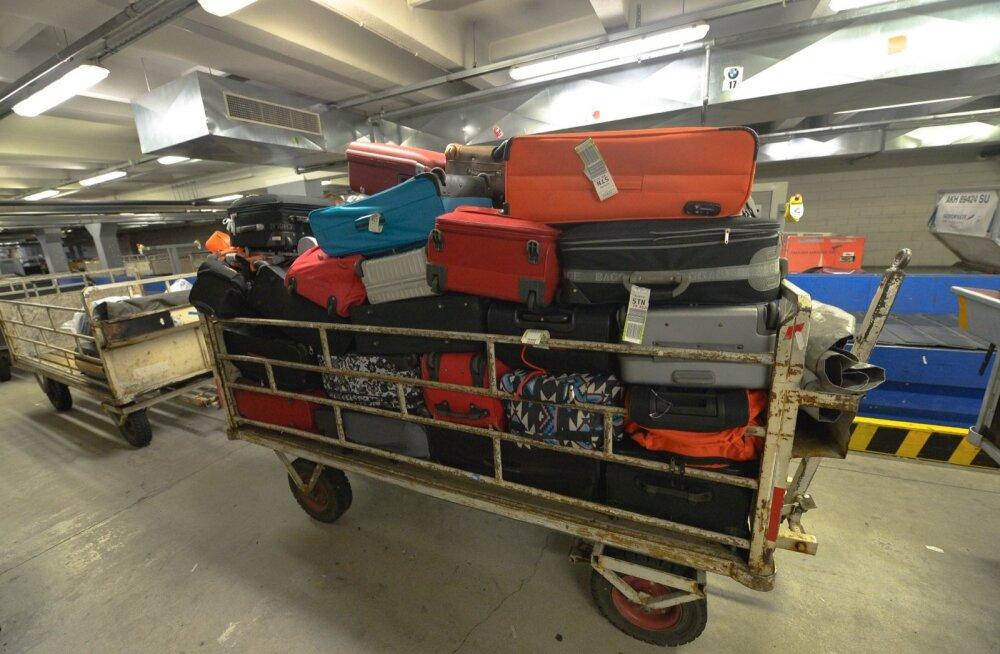 Российских туристов вывезут из Египта без багажа