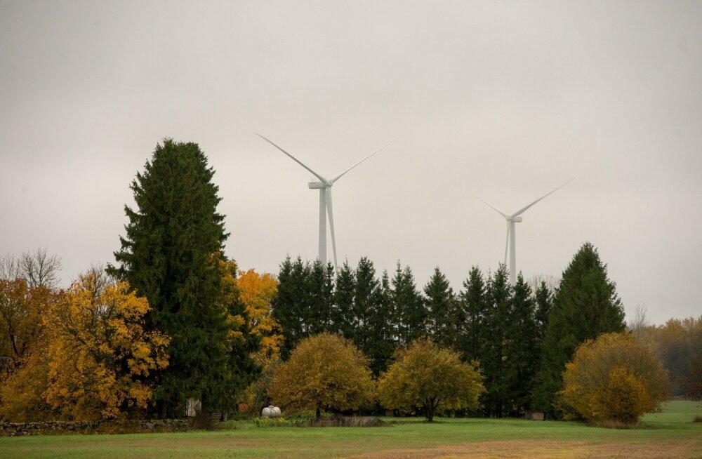 Eesti Energia plaanib Läänemaale uut tuuleparki