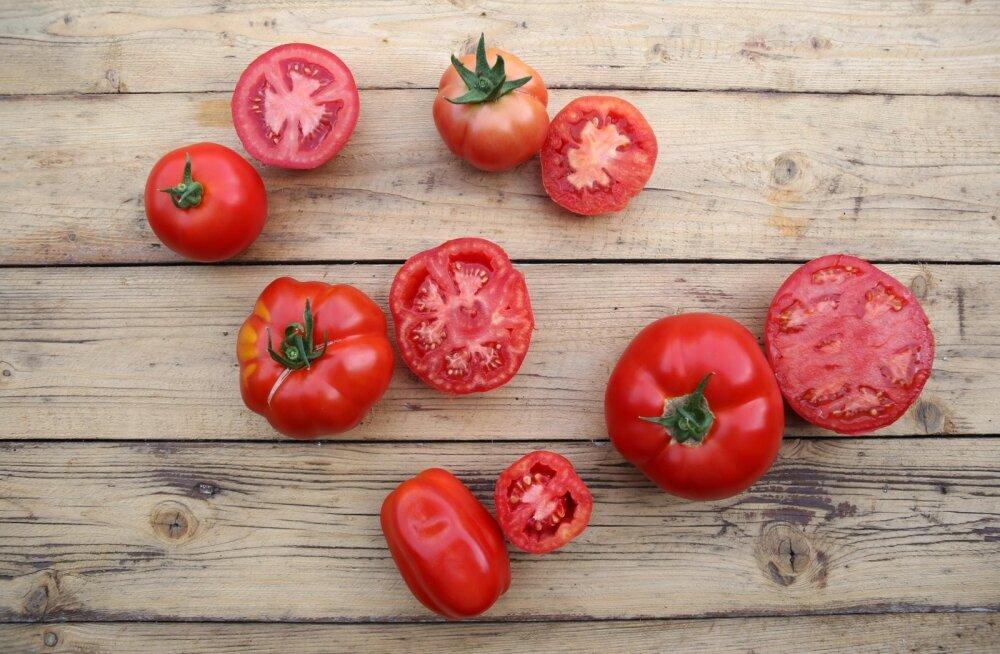 Tomatid, köögiviljaaed, Järve aiandustalu, Viljandimaa