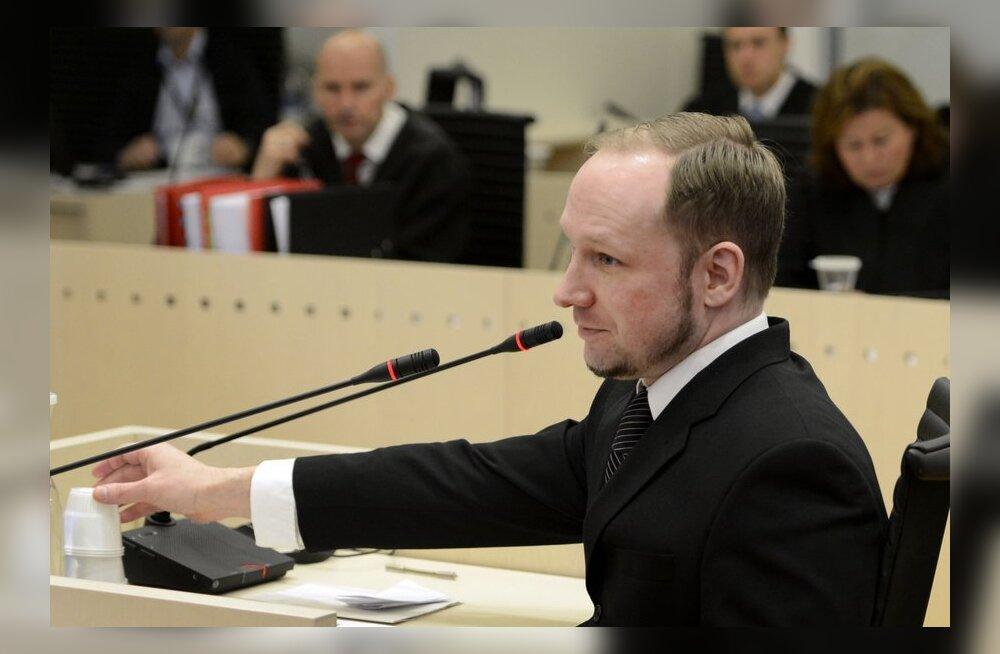 Breivik: terrorirünnakuks peab olema selgroogu