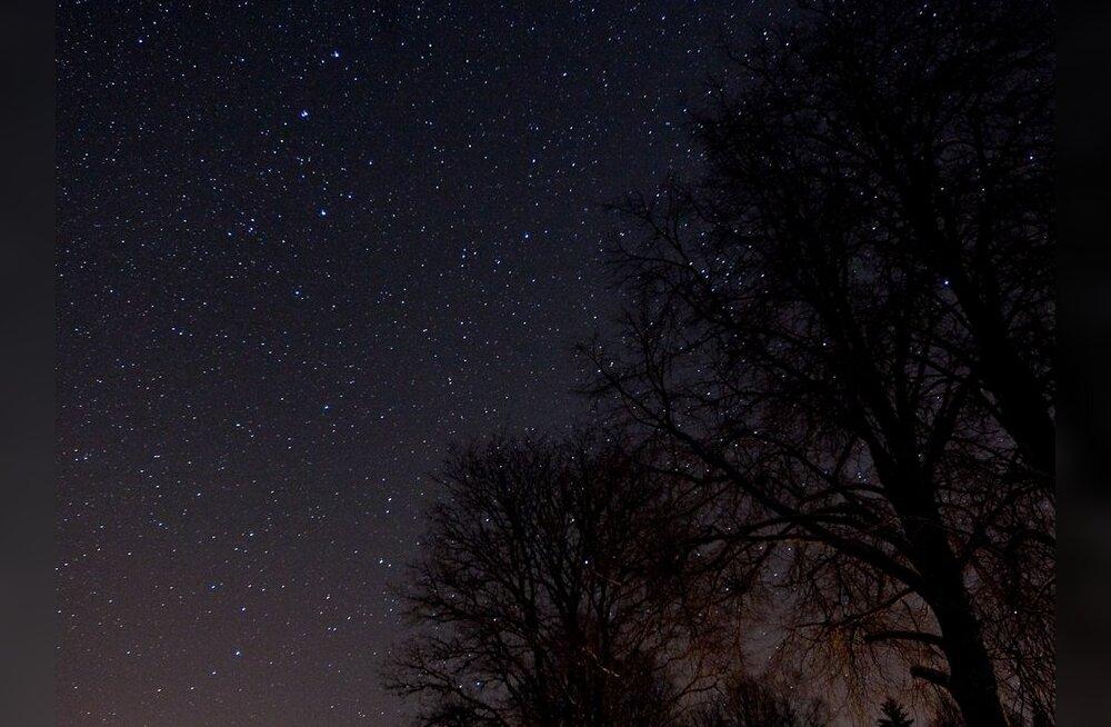Universumi esimesed tähed võivad endiselt särada!