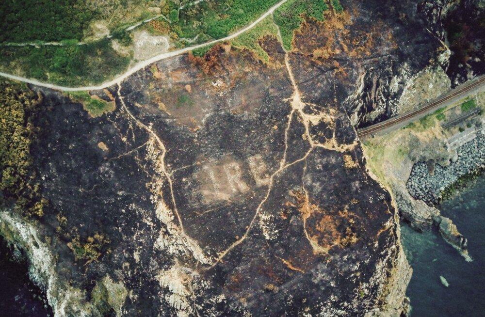 Loodustulekahjud paljastasid Iirimaal Teisest maailmasõjast pärit sõnumi pilootidele