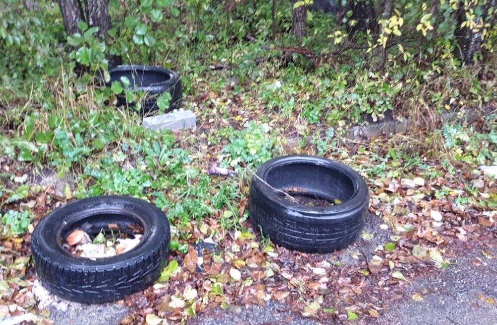Вместо свалки автомобильные шины оказываются в лесу