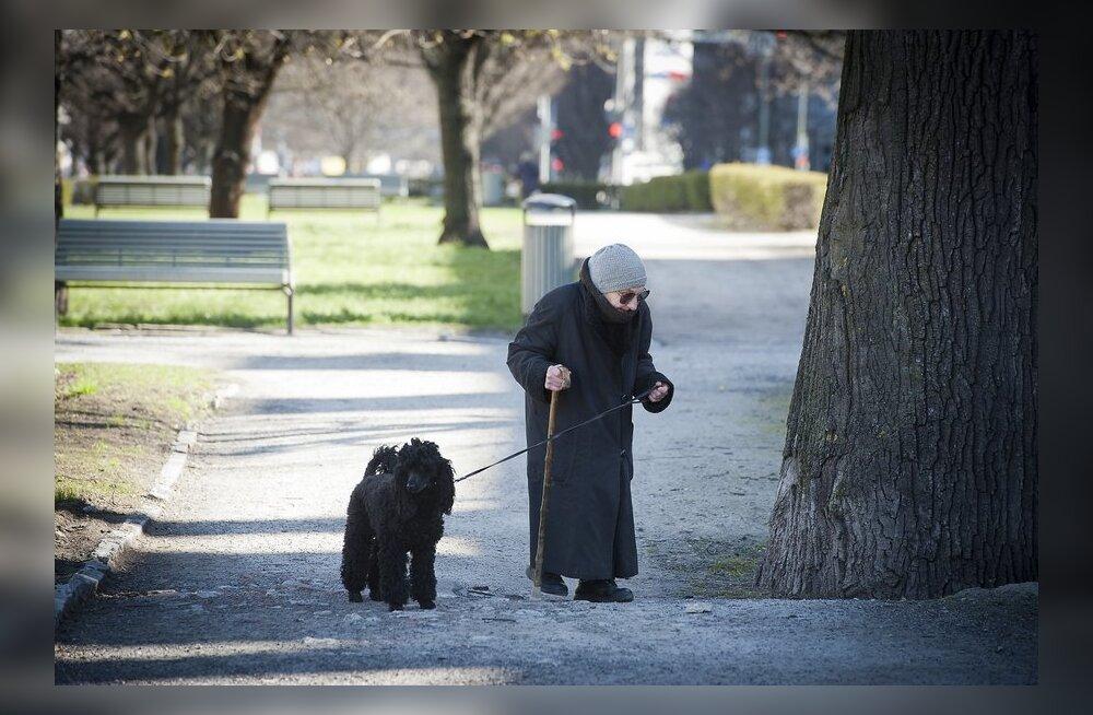 Eesti vanim inimene on Harjumaal elav 107-aastane naine.