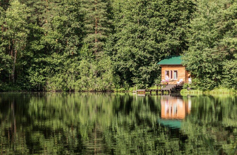 Опрос: каждый третий житель Эстонии, отменивший отпуск за рубежом, проведет это лето на даче