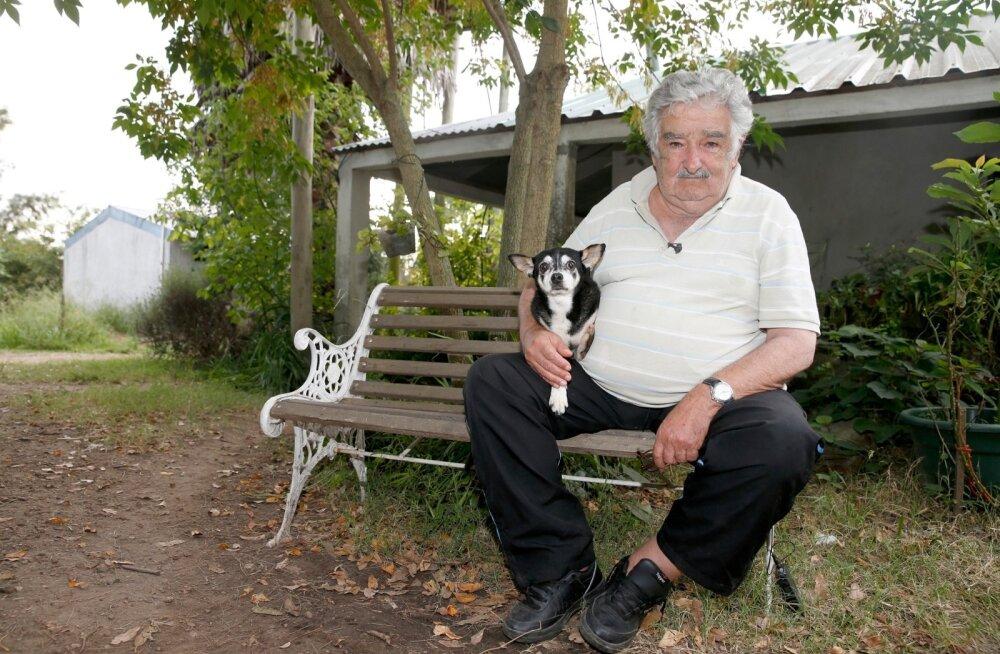 Uruguai president Jose Mujica koos koera Manuelaga.