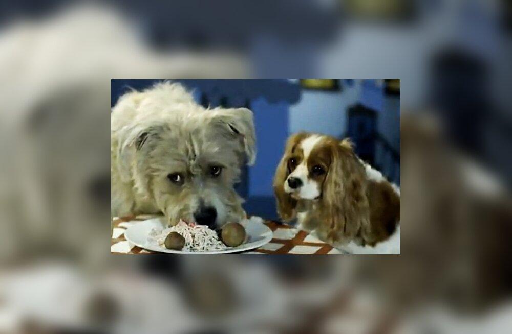 Armas video: Leedi ja Lontu reklaamklipp tõeliste koertega