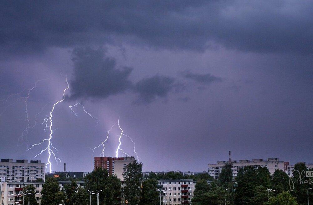 Äike Tallinnas Mustamäel