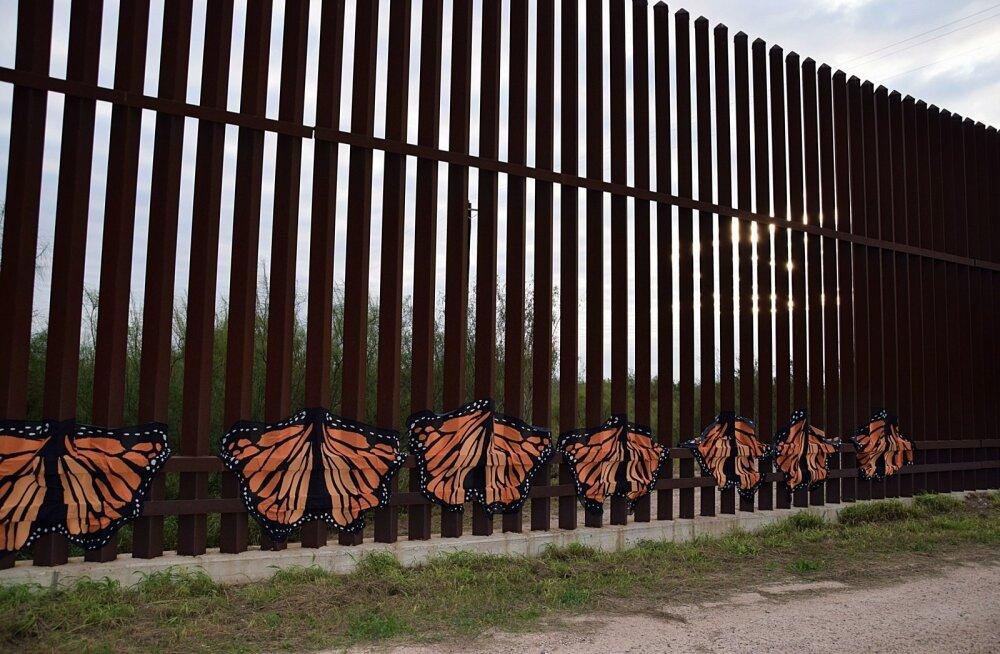 Protesteerijad on USA-Mehhiko piiritarale lisanud liblikaid.