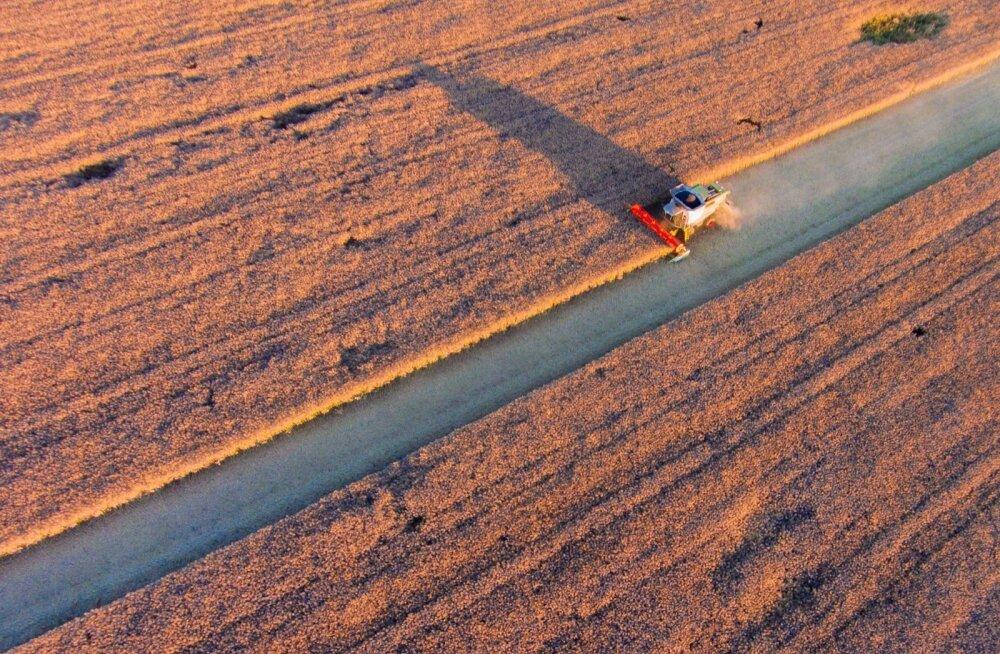 Swedbank põllumeestest: kulusid ei ole võimalik lõputult vähendada