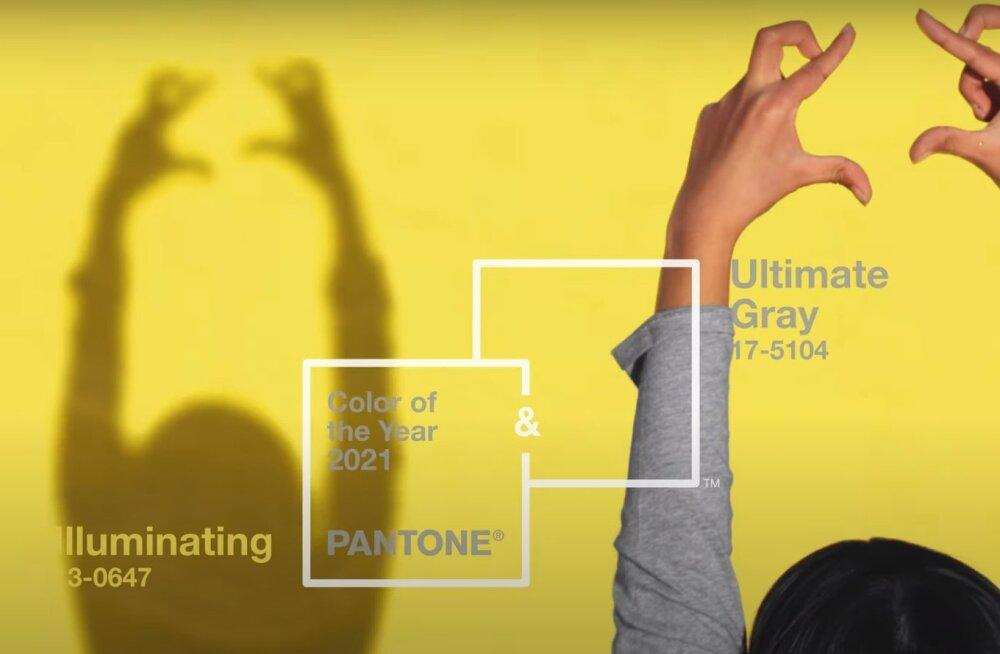 Институт Pantone объявил два главных цвета 2021 года