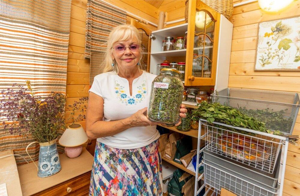 SAAGIGA Marika ja tema ise kasvatatud ja loodusest korjatud taimed.