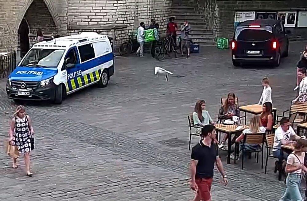 Tallinna vanalinnas peeti kinni inimestelt dokumente nõudnud libapolitseinik
