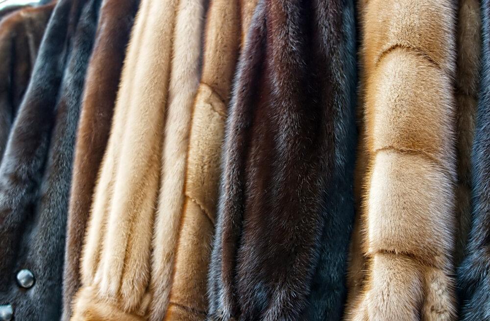 The Guardian: kas karusnahatööstus on jätkusuutlik?