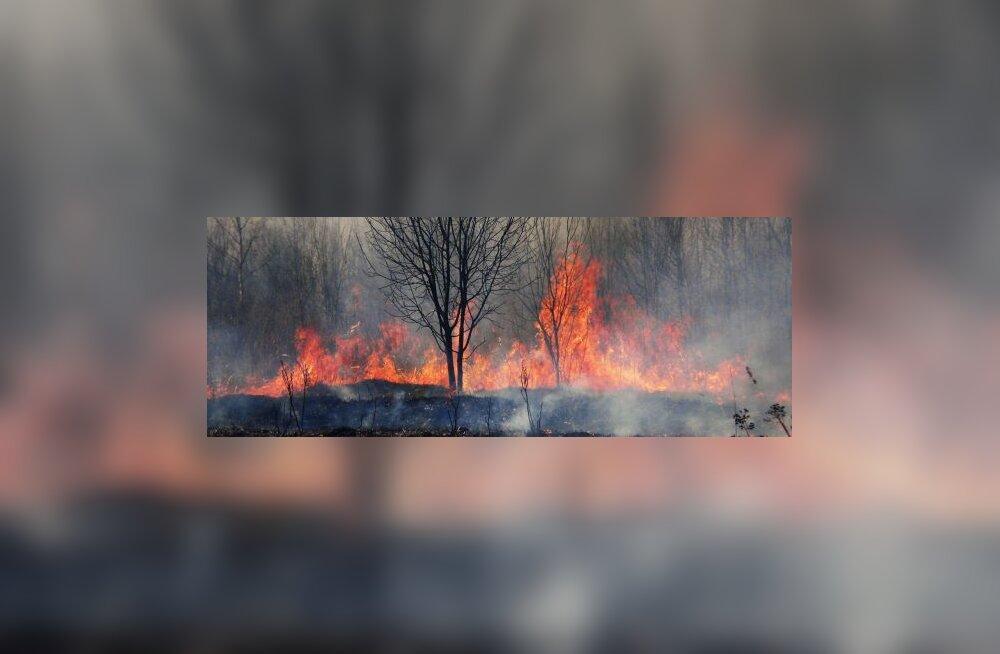 Kulu põletanud soomlane hukkus leekides
