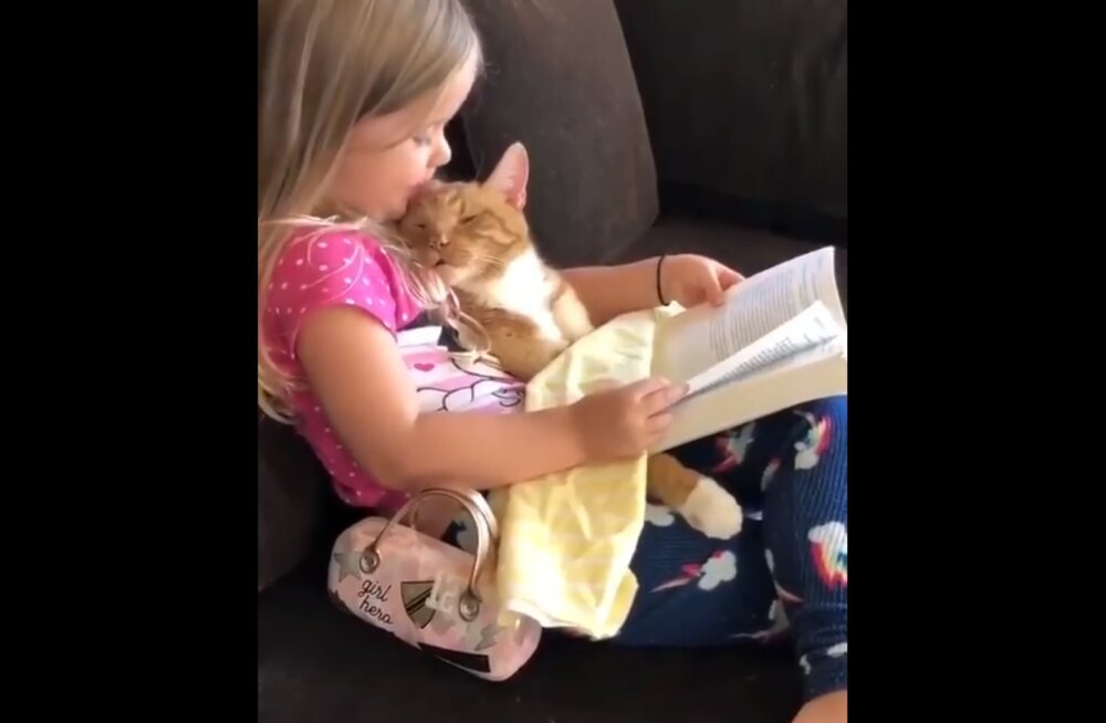 Armas VIDEO   Ka kass tahab unejuttu kuulata