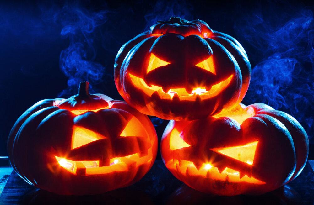 Halloween ehk kõikide pühakute öö | Ennusta tulevikku ja vaata, kuidas sul armastuses õnne on!