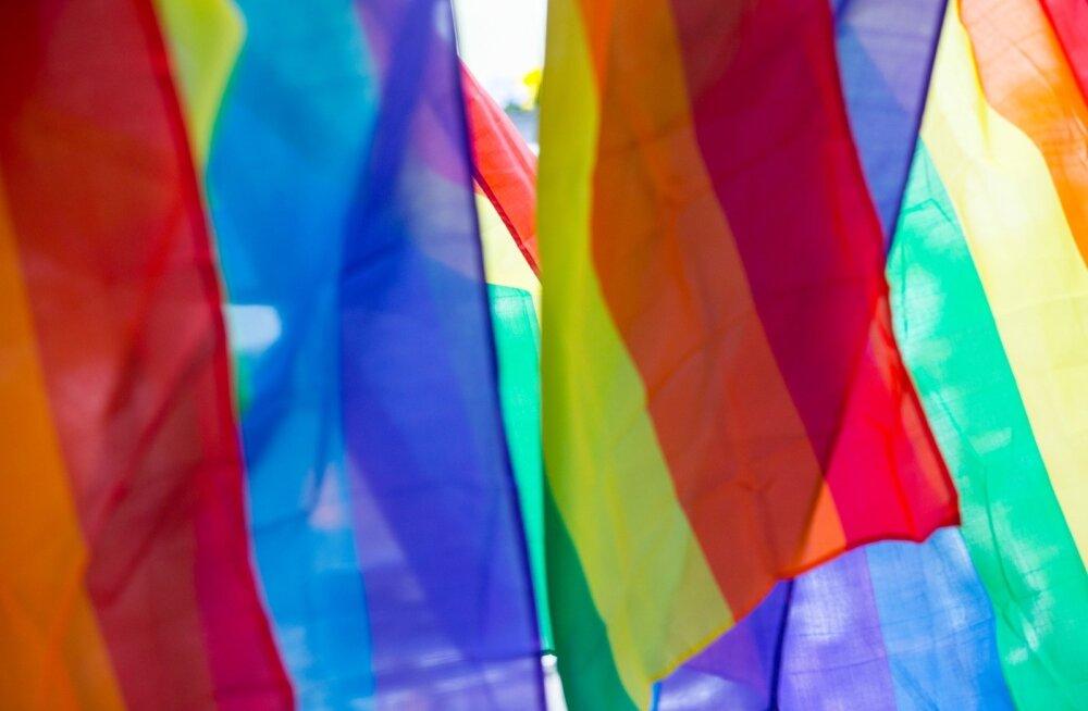 Eesti LGBT+ kogukond kutsub vikerkaarelippude all laulupeorongkäiku jälgima
