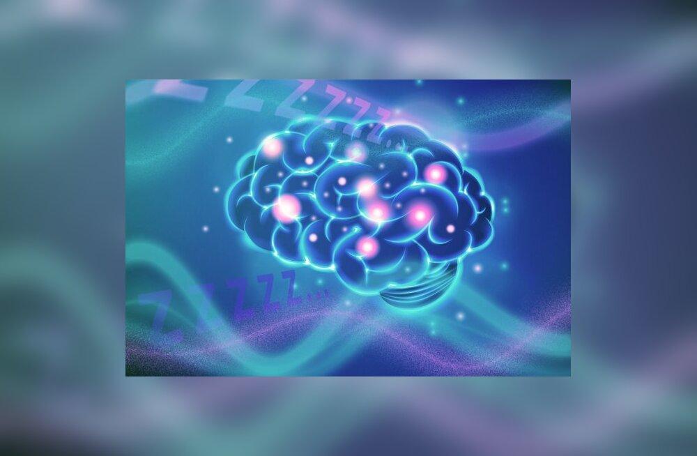 """Teadlased tõestasid laserite abil, et ärkveloleku ajal osa ajust """"magab"""""""