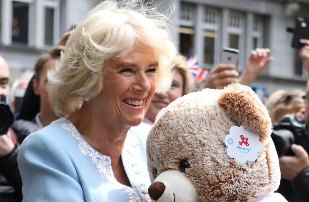 Värske vanaema jäi prints Harry beebi pilti nähes tuimaks: aitäh, et mulle seda näitasite