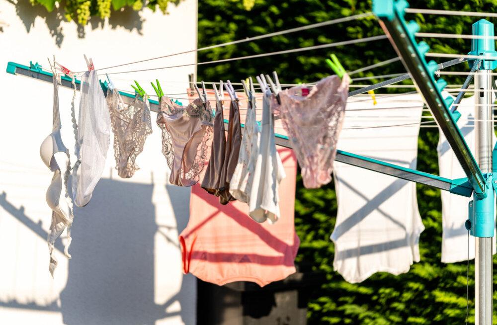 Teeme puust ja punaseks: kas pesukuivati on ikka igas majapidamises vajalik? Või miks jääda ikka pesunöörile kindlaks?